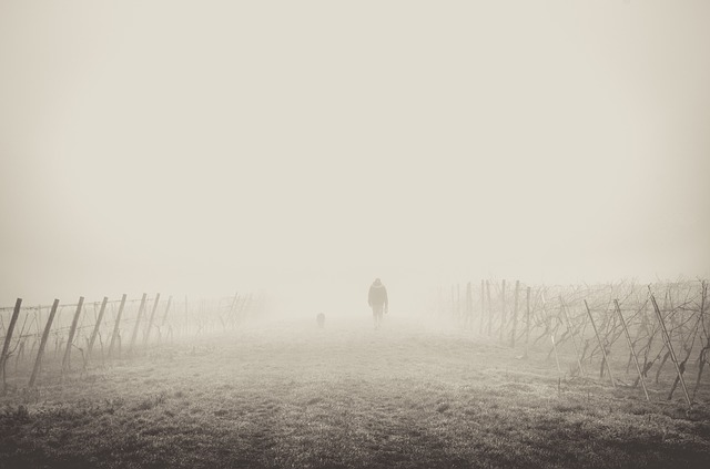 The Fog of Divorce; Finding Clarity